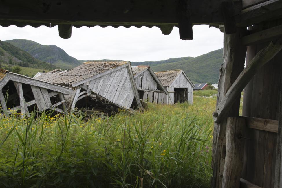 Foto: Trond J. Hansen